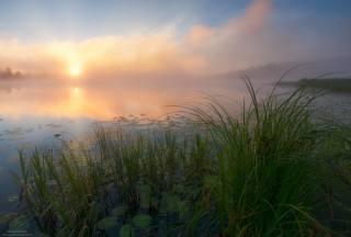 річка, схід, туман, красиво, фотограф, Андрей Олонцев