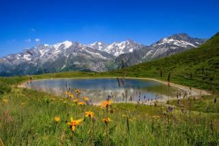 луг, квіти, озеро, гори, небо