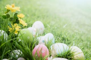 Easter, holiday, spring
