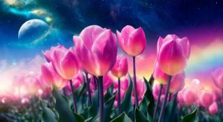 3d, digital art, graphics, nature, spring, flowers, tulips, the sky, stars, planet