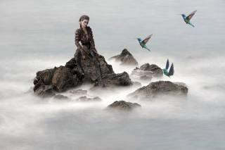 girl, rock, birds, fog