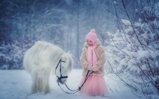 child, girl, dress, coat, hat, scarf, winter, nature, snow, Animal, horse, pony