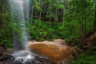 tropics, Australia, Южный Уэльс, waterfall