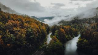 road, forest, autumn, fog, clouds