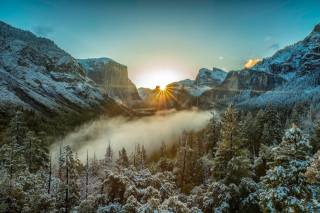 USA, nature, landscape, reserve, Yosemite, mountains, Forest, trees, frost, clouds, fog, morning, the sun, rays