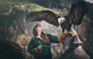 holka, ptáci světa, orel