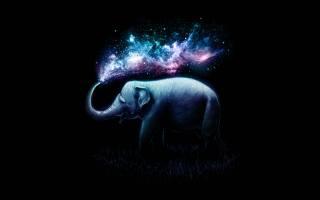слон, красочные, Surreal, AMOLED, черный, фон