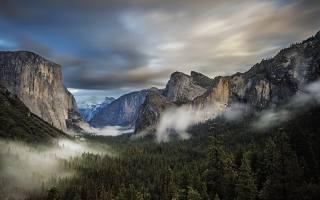 гори, ліс, туман