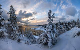 річка, ліс, сніг