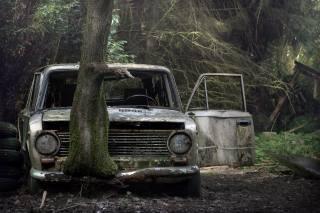 лес, дерево, машина, лом