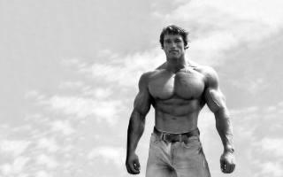 arnold schwarzenegger, Arnold Schwarzenegger, actor