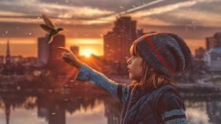 колибри, детская мечта