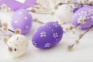 Фиолетовые пасхальные яйца, праздник, веточки