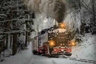 train, winter