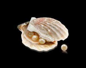 sink, pearls, background