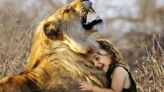 dívka, lev, krajina