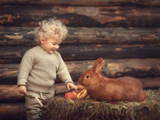 Елена Михайлова, ребёнок, мальчик, малыш, Животное, кролик, сено, яблоки, баранки, стена, брёвна