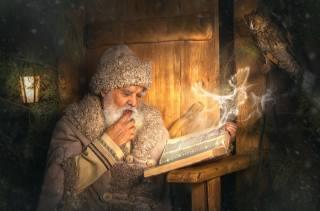 Owl, bird, magic, book, The old man, Santa Claus, owl