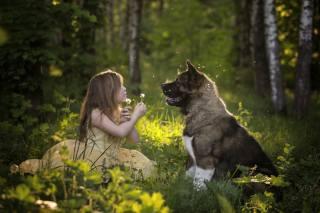 девочка, собака, друзья, фото, позитив
