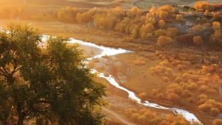 Башанг, autumn, trees, river, fog, morning, China