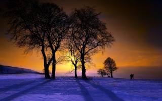 зима, дерева, захід, сніг, люди