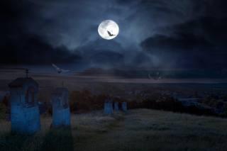 night, the moon, клабище, bats, Halloween
