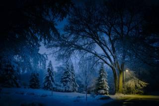 міннесота, зима, ніч, парк