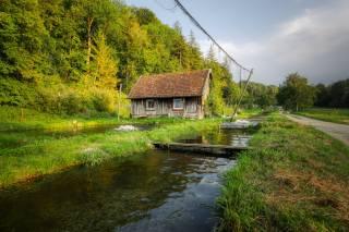 trees, the house, рыбная ферма, autumn