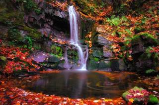waterfall, rock, autumn leaves, for