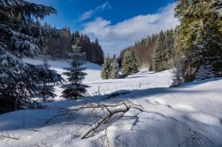 Тюрингский лес, Німеччина, зима, сніг
