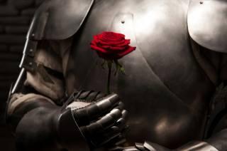 rytíř, brnění, růže, kyrys, rukavice, ocel, krunýř, заклепки, Bojovník