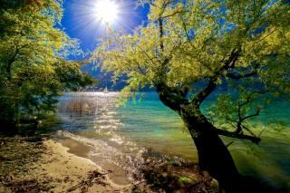 příroda, krajina, jezero, stromy, břeh, plachetnice, slunce, paprsky