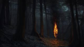 ліс, фентезі, арт, креатив