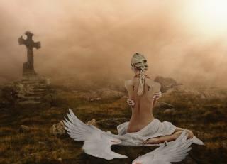 Sergii Vidov, проф фото, Падший ангел