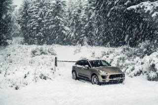 forest, snow, Porsche, forest, Porsche, Car, snow, winter