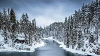 les, řeka, dům, sníh