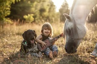 Agnieszka Gulczynska, dítě, chlapec, pes, kůň, kůň, přátelé, příroda, kytara