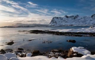 Norsko, hory, Лофотенские, ostrovy, pobřeží, husy