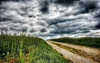 nebe, mraky, cesta