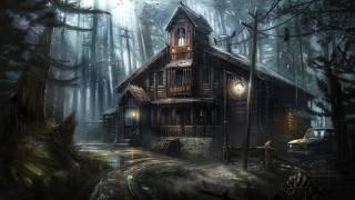 будинок, ніч, ліс