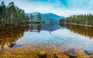 Russia, forest, the lake, stones, Karelia, nature