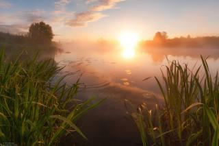 Východ slunce, krásně, říčka, ráno, foto, Андрей Олонцев