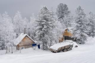 зима, снег, деревья, дом, Авто