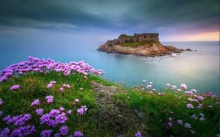 příroda, krajina, moře, břeh, tráva, květiny, ostrůvek, zřícenina, ruiny