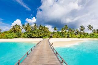 Maledivy, Maldives, letovisko, ostrov, oceán, palmové, ráj