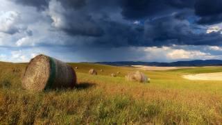 pole, mraky, seno, mraky, tráva, příroda