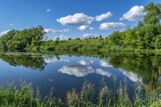 nebe, mraky, jezero, odraz, stromy
