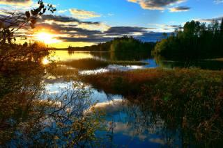 koupaliště, rybník, příroda, večer