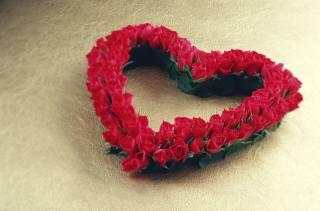růže, srdce