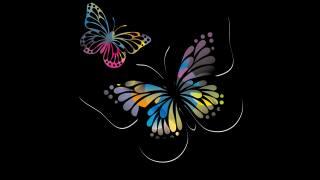motýli, černá, pozadí